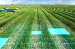 Drone scanning farm, Analyze the field, Smart agriculture, internet of things. 4th industrial revolution